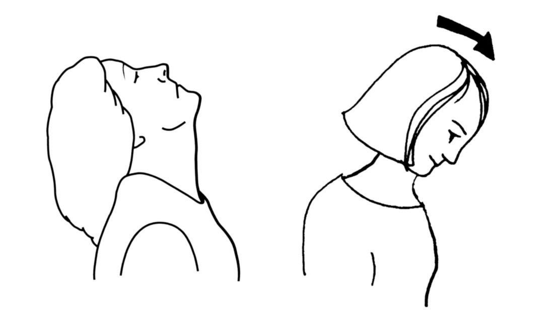 Pohyby hlavou